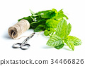 Branch mint leaves and thread with scissors. 34466826