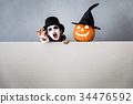 Halloween Pumpkin Autumn Holiday Concept 34476592