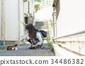 高中女生 猫 猫咪 34486382