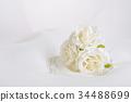 花朵 花 花卉 34488699