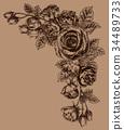 วัสดุกรอบของดอกกุหลาบวาดด้วยปากกาลูกลื่น 34489733