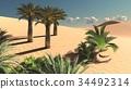 Wonderful point of view on Sahara desert at sunset 34492314