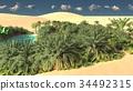 Wonderful sight on Sahara desert at sundown 3d 34492315