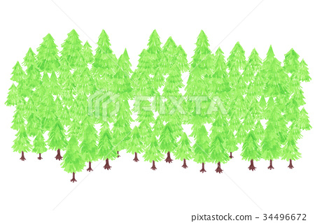 Forest background forest 34496672