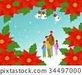 가족, 포인세티아, 4 34497000