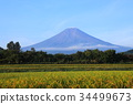 후지산, 야마나시, 가을 34499673