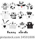 動物 熊 貓 34501606