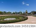 ดอกไม้,ไม้,โรงงาน 34501984