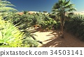 Awesome view on Sahara desert at sunset 3d 34503141