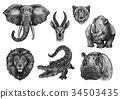 Wild animals vector sketch icons for African zoo 34503435