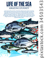 Vector poster of sea fish sketch ocean fishes life 34503543