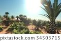 Great point of view on Sahara desert at sundown 3d 34503715