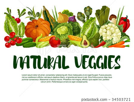 Vector poster of vegetables or veggies harvest 34503721
