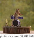 squirrel stands behind a Drum Kit 34506560
