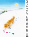 dog, dogs, aquarelle 34516082