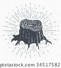 Tree stump vintage label sketch retro badge vector 34517582