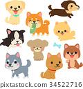 例證套狗各種各樣的姿勢 34522716