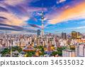 Tokyo, Japan Skyline 34535032