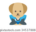 dog dogs vector 34537888