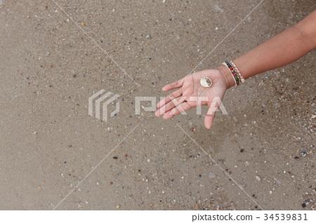 hermit crab on hand 34539831