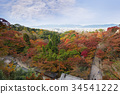 beautiful autumn maple leaves, Kyoto, japan 34541222
