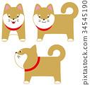 Shiba Inui性格 34545190
