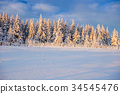 forest, mountain, snow 34545476