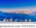 winter landscape trees in frost 34545691