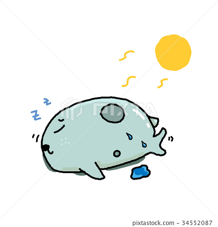 海豹插图 34552087