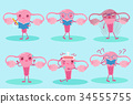 cute cartoon uterus 34555755