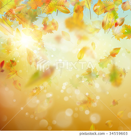 Autumn abstract background. EPS 10 vector 34559603