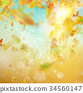 Autumn abstract background. EPS 10 vector 34560147