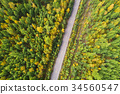aerial shot of trail in colorful autumn forest 34560547
