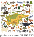 Flat Asian flora and fauna map constructor element 34561753