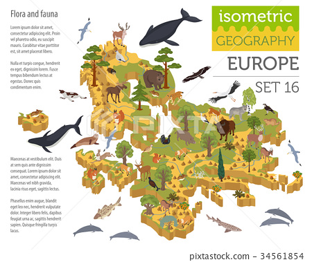 Isometric 3d European flora and fauna map 34561854