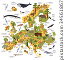 Flat European flora and fauna map constructor  34561867
