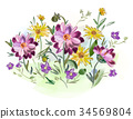 Watercolor flowers violets and pansy and leaves on 34569804