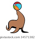 cartoon, fur, seal 34571382