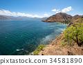 Pink Beach of the Komodo Islands Flores Sea 34581890
