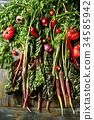 蔬菜 胡萝卜 西红柿 34585942