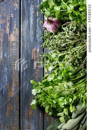 Variety of herbs 34586010