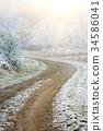 Frozen winter forest path 34586041