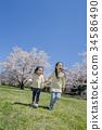 姐妹 公園 櫻花 34586490