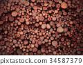 tree, wood, log 34587379