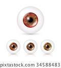 Human Eyeballs Set 34588483