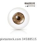 Photo Realistic Eyeball. Human Retina. Vector 34588515