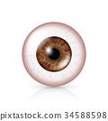 eye diseases infection 34588598