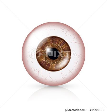 Conjunctivitis. Red Eye 34588598