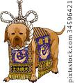 tosa, sumo wrestler's loincloth, dog 34596421