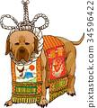 개, 강아지, 금줄 34596422